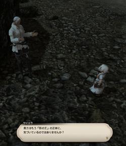 【ff14】ロールクエスト020