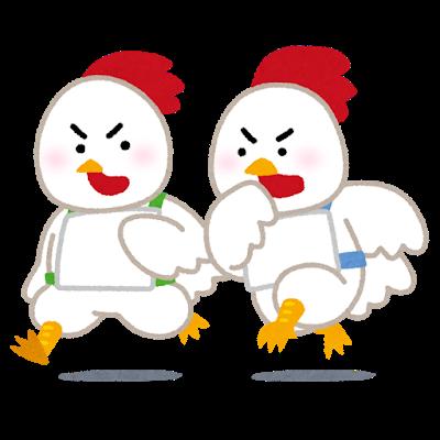 chicken_race_niwatori