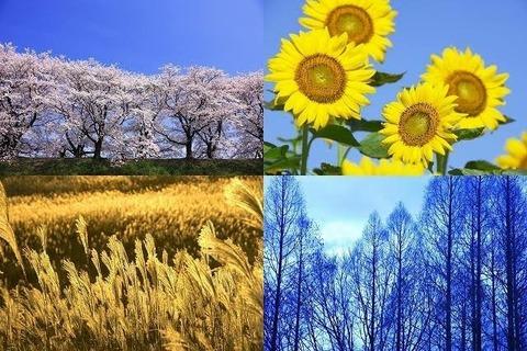 日本さん、秋がないwwwwwwwwwww