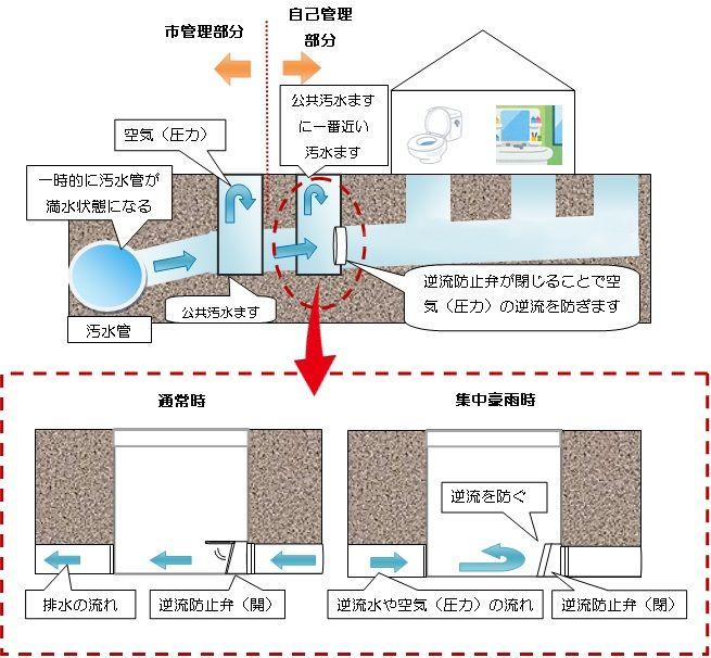 トイレ 逆流 台風