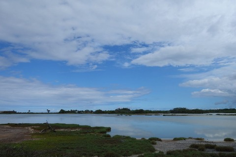 カナハビーチ