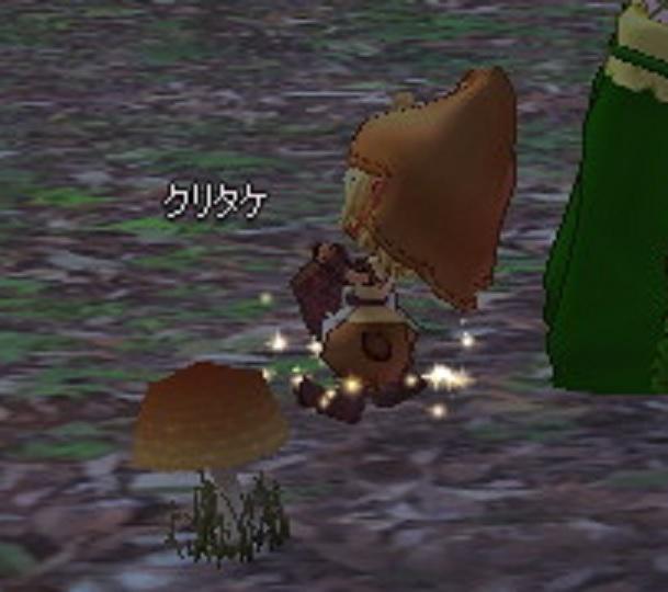 クリタケの妖精