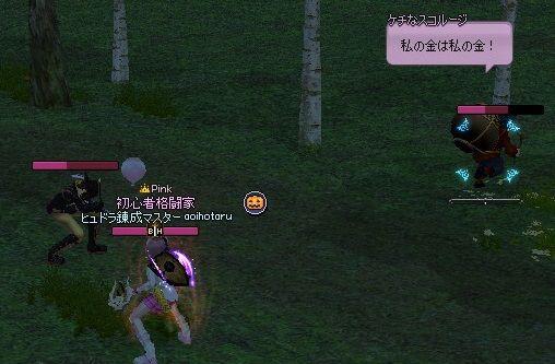 mabinogi_2014_03_14_068