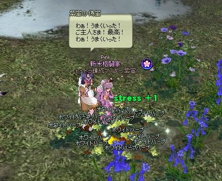 mabinogi_2016_03_29_007
