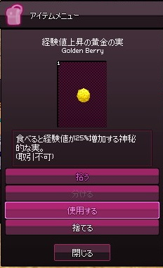 mabinogi_2014_11_28_005