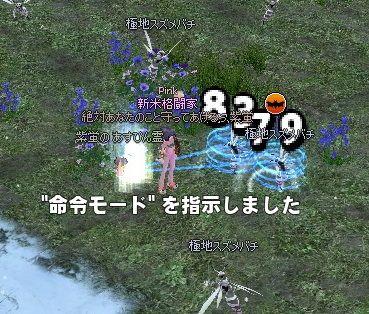 mabinogi_2013_12_03_010