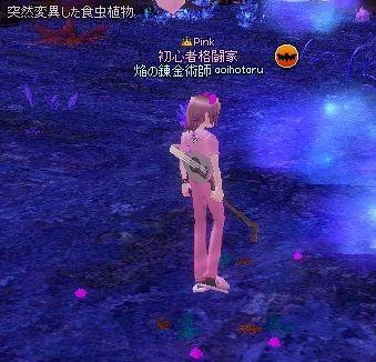 mabinogi_2013_11_27_008