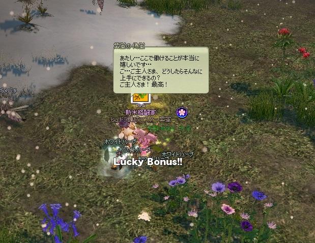 mabinogi_2016_03_29_008