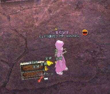 mabinogi_2013_12_25_008