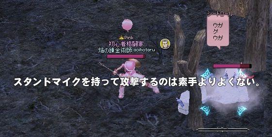 mabinogi_2013_10_22_005