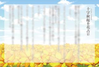十字秋桜の花占い-カタログ用