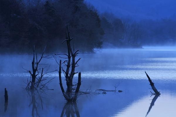 湖畔の静けさ