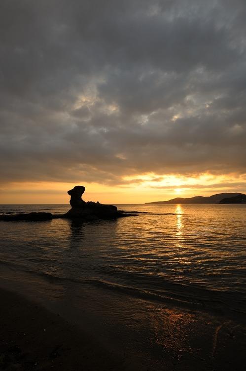 夕陽とラクダ