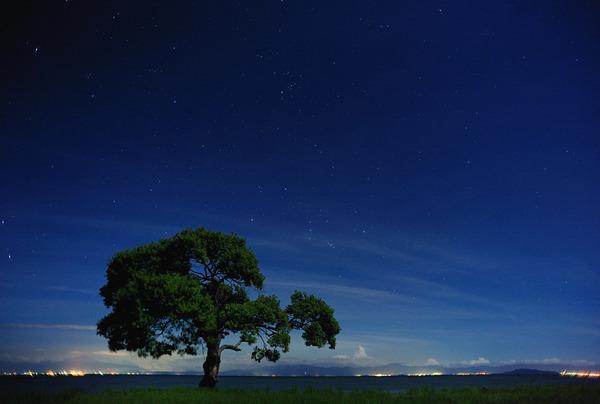 夜空を仰いで
