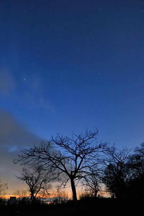 星の舞う空