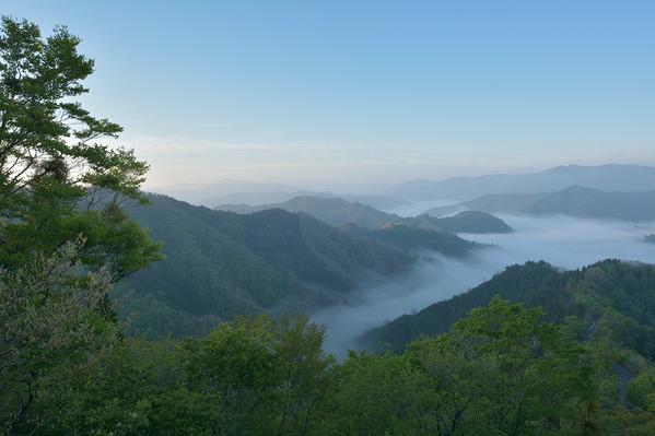 小入谷の雲海