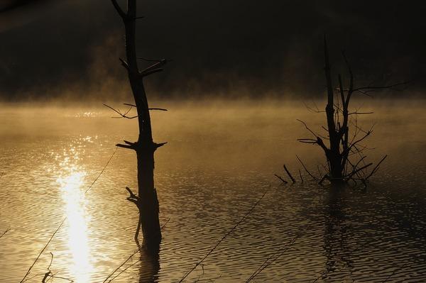 霧燃ゆる朝
