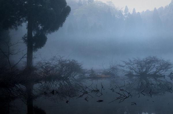 朝靄の季節