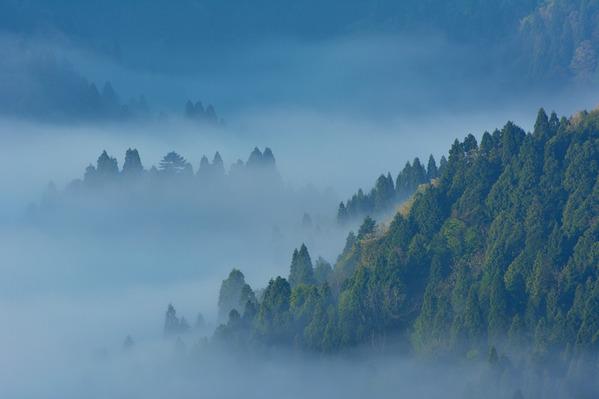 波立つ雲海