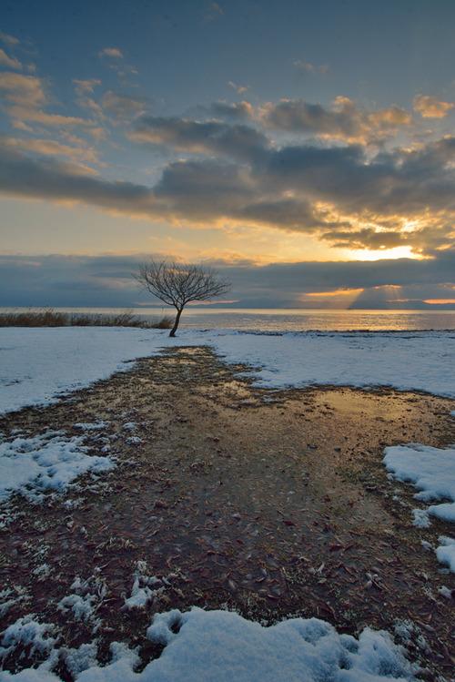 薄雪の湖畔