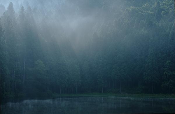 雨の日デビュー