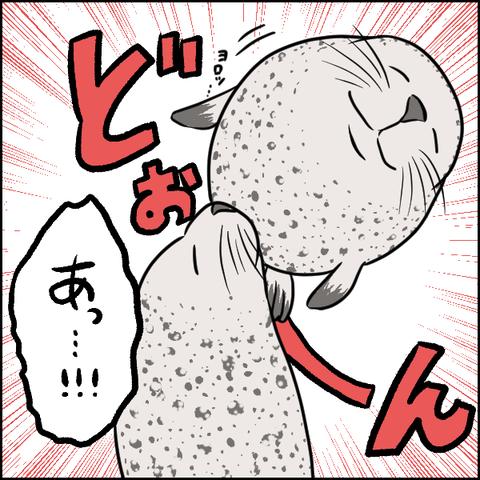 03_出力インスタ_003
