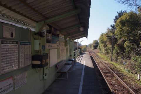 P1130059_a