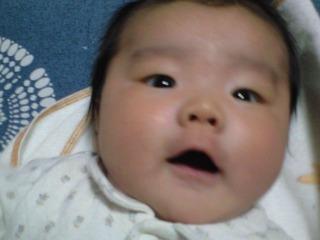 20101209seigo66