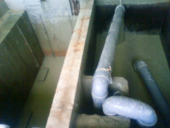 泥染め水槽