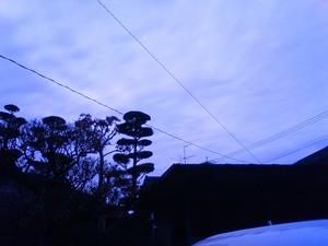 11月19日の空