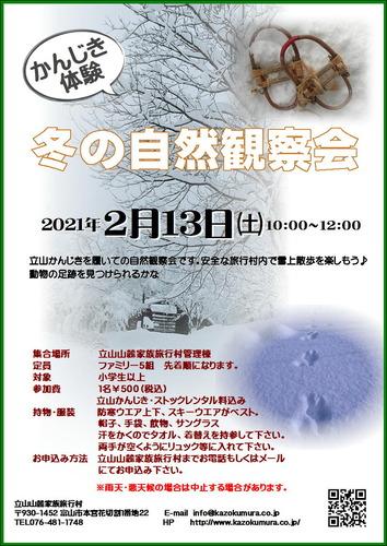 冬の自然観察会