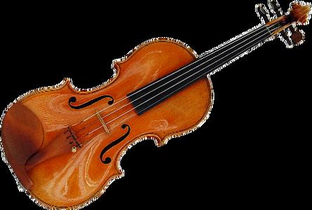 ヴァイオリン屋で働いてるけど質問ありますか