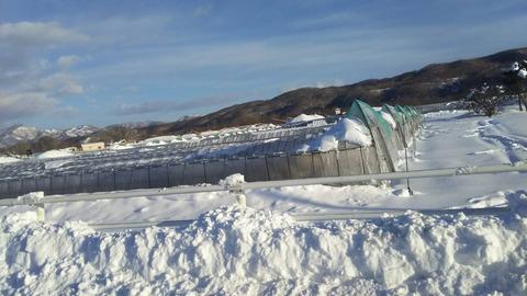 180207日高地方の大雪01