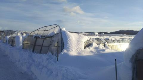 180207日高地方の大雪02