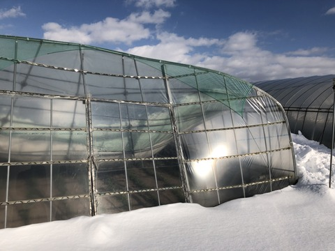 180209日高地区の豪雪被害視察03