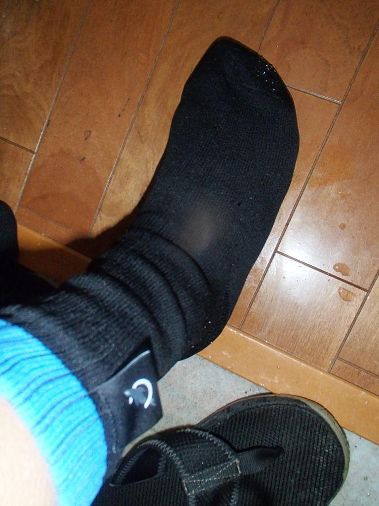 オットセイのマークの防水靴下
