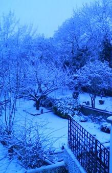 白い雪景色〜♪
