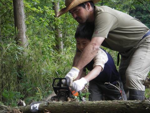 木の体験(木を倒す)
