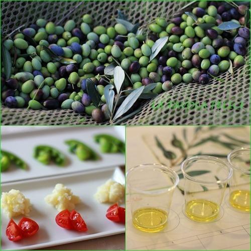 8 olive lesson annai