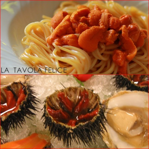 6 spaghetti ricci