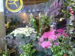 フィレンツェお花屋さん