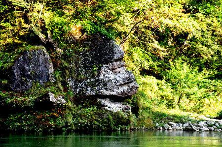 鬼怒川ゴリラ岩