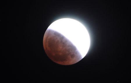 ヒビノタネ-2011.12.11