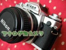 ヒビノタネ-2009.3.24