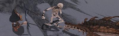 久しぶりの骨