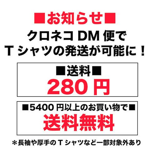 クロネコDM送料無料-01