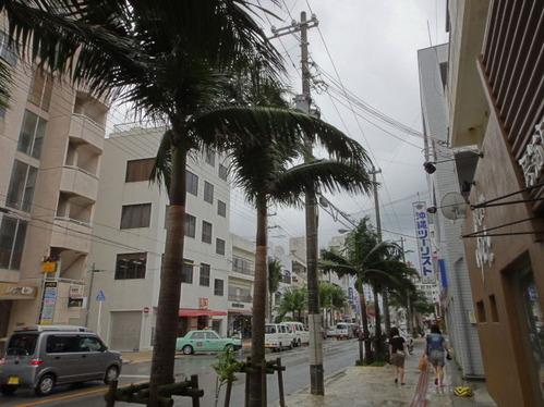 ishigaki_0175
