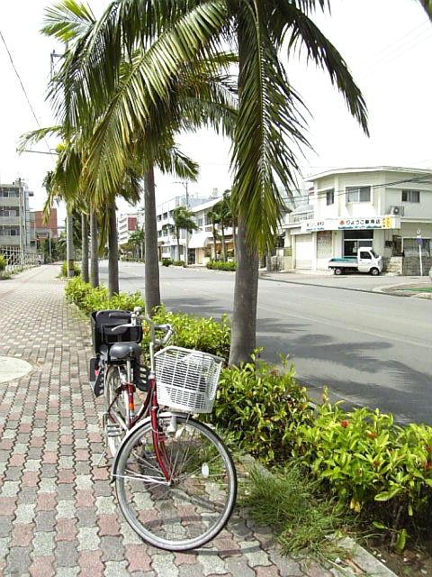 ishigaki_0221