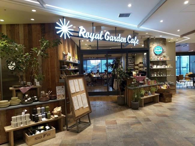 目白 ロイヤルガーデンカフェ Royal Galden Cafe リコッタチーズの