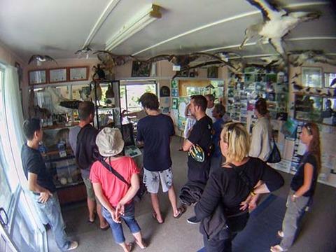 z2008_1218_1009_DSCF4946野鳥保護センター